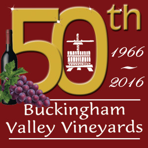 We created a special logo to commemorate Buckingham Valley Vineyards' 50th anniversary.